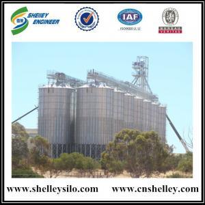 Hot sale hopper bottom steel grain silo for grain